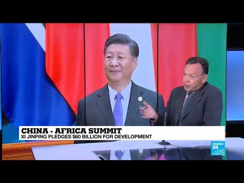 "China-Africa Summit: ""China needs African raw materials and energy"""