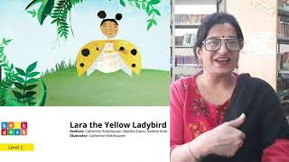 Lara the Yellow Ladybird