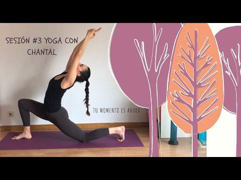 SESIÓN 3 HATHA YOGA CON CHANTAL (Flexibilidad general y movilidad de todo el cuerpo)