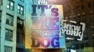 It's Me Or The Dog | New York
