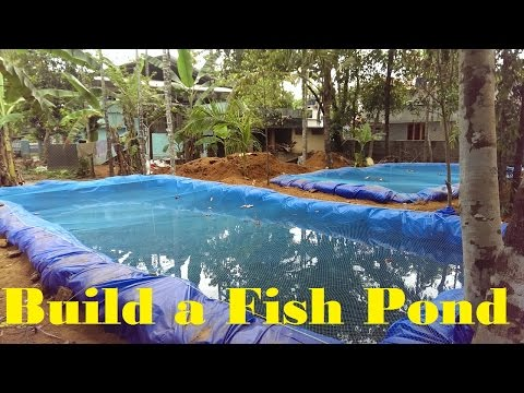 How To Build A Fish Pond | Fish Farming In Backyard