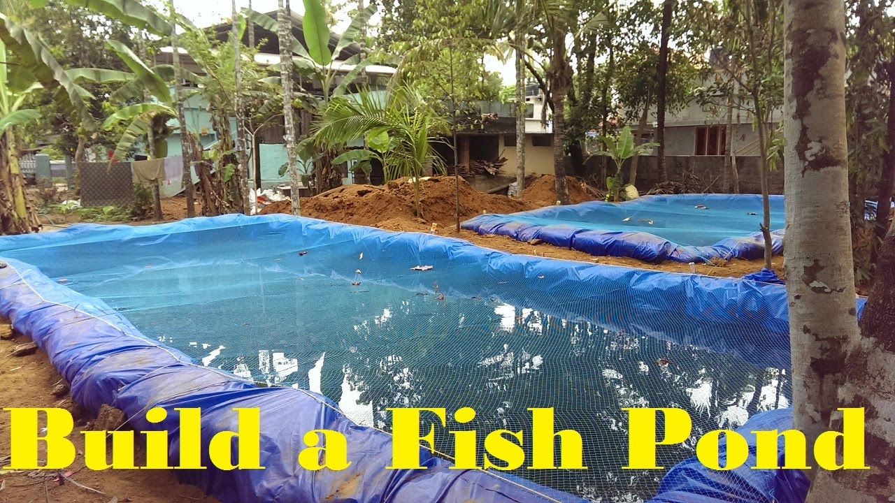 How to build a fish pond fish farming in backyard youtube for How to build a small lake