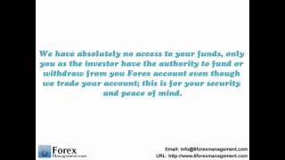 6 Forex Management.com.wmv