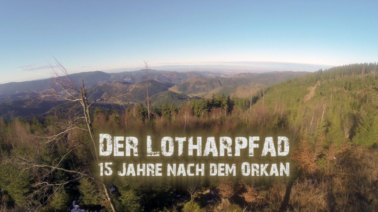 Lotharpfad Schwarzwald