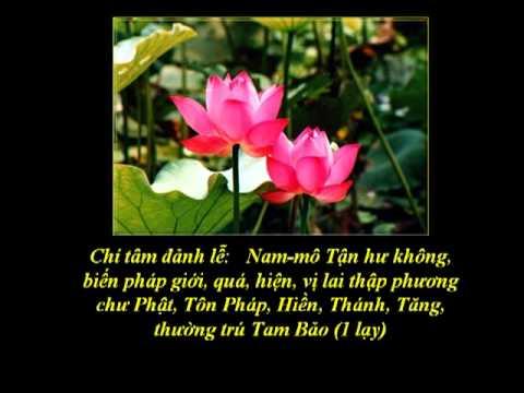 (1/12) Tụng Kinh Phổ Môn-Tán Phật-(Âm)-Thầy Thích Trí Thoát tụng