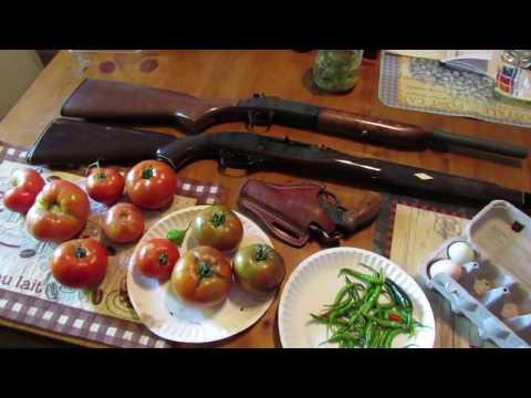 Three Basic Homestead Guns