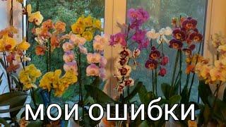 Мои ошибки которые я раньше делала , при уходе за орхидеями! уход за ОРХИДЕЯМИ! мой опыт! орхидеи!