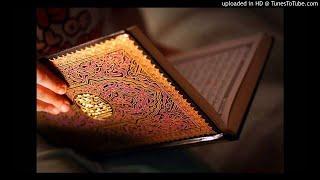 AlHijr - سورة الحجر بصوت القارئ الشيخ الزين محمد أحمد