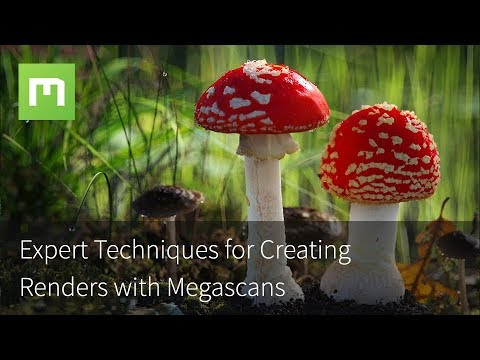 Expert Techniques for Creating Renders with Megascans