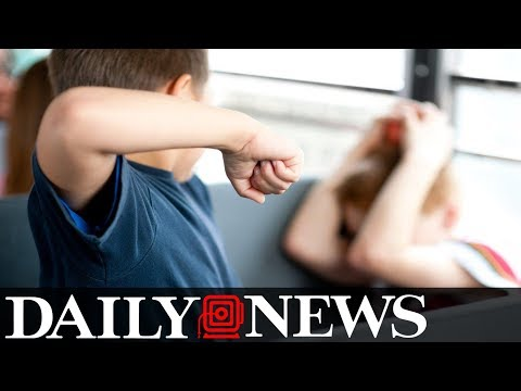 New York town creates law to punish parents of bullies