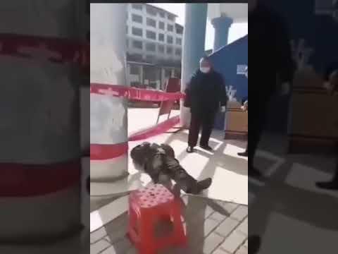 China Leaked ¿epileptic? What do you think?