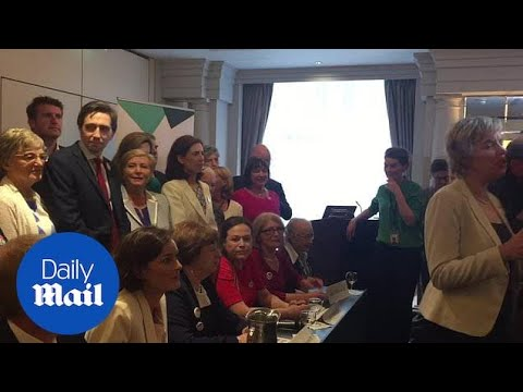 Irish Health Minister is heckled by anti-abortion campaigner - Daily Mail