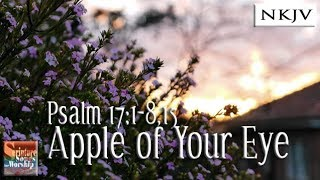 Psalm 171815 Song quotApple of Your Eyequot Esther Mui