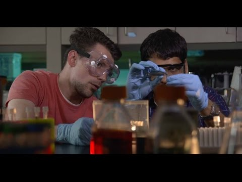 Quinnipiac Master's Programs in Medical Laboratory Sciences and Molecular and Cell Biology