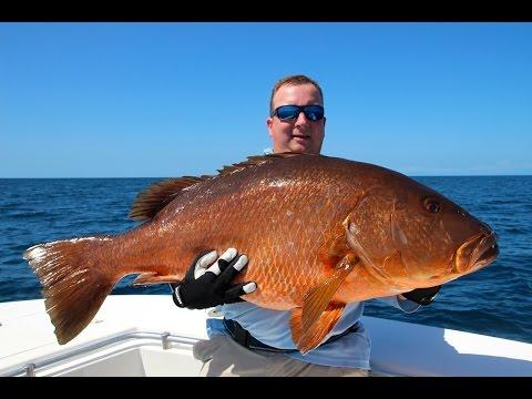 Visreis Panama, Fishing in Panama