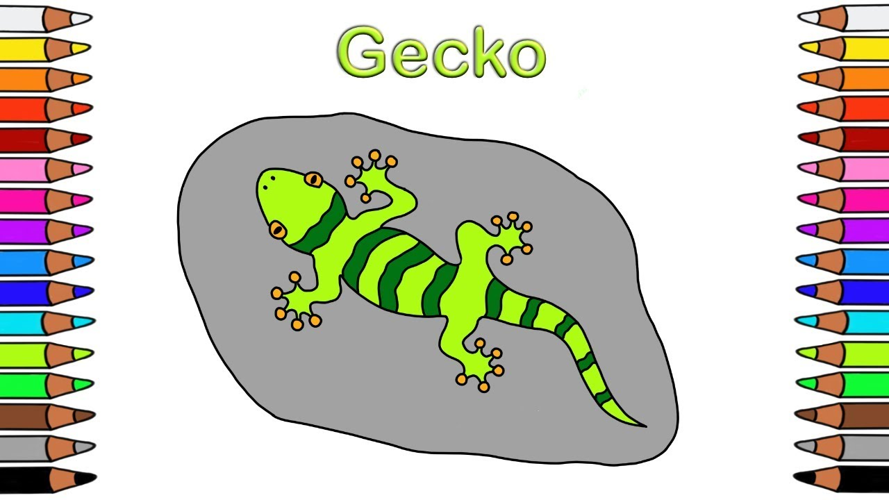 Ausmalbilder Für Kinder Malbuch Für Kinder Malen Für Kinder Ausmalbilder Gecko