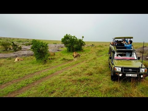 Travel Kenya