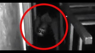 TOP 10 SCARIEST VIDEOS ON THE INTERNET...