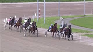 Vidéo de la course PMU PRIX PAUL HAGOORT & ROBIN BAKKER