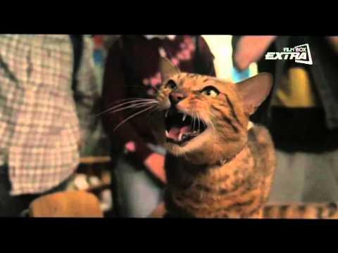 Svein i szczur na kanale FilmBox Extra