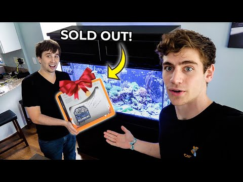 SURPRISED HIM WITH NEW AQUARIUM EQUIPMENT!!! 🎉