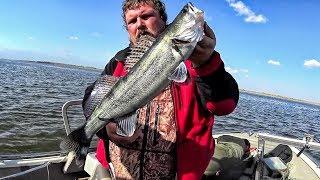 Рыбалка в Астрахани.  Осень , судак, воблеры.