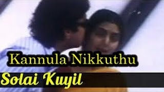 Kannula Nikkuthu Nenjula Sokkuthu Maane Song  HD - Solai Kuyil Movie | S P B Love Songs