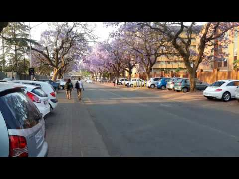 My visit to University of Pretoria, Hatfield, South Africa