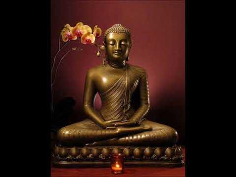 法護法師-巴利語晚課 9. 慈功德經 Mettānisaṃsa Sutta (Discourse on the Benefits of Loving-kindness)
