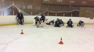 Школа Вратарей.Сборы Хоккейных Вратарей
