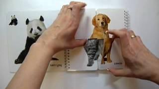 Кубик знаний. Мои первые животные. Книга с разрезными страницами - 978-5-402-01280-6