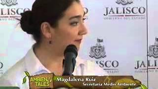 Se declaran áreas protegidas bosques de Jalisco