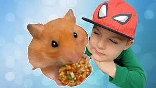 Tim and Mama Pretend Play with Magic Toys | My First Pet Hamster
