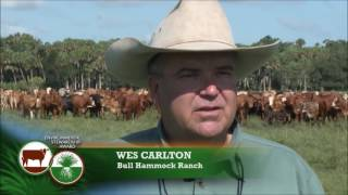 NCBA's Cattlemen to Cattlemen - July 12, 2016