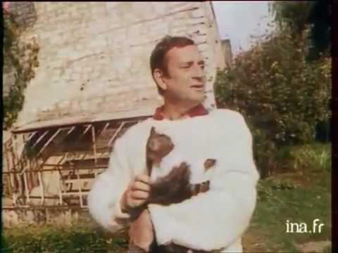 Georges Descrières : un chat m'a sauvé la vie - Archive vidéo INA