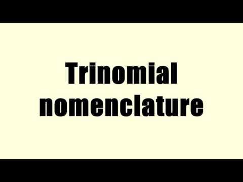 Trinomial nomenclature