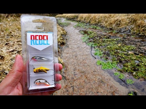 Testing $1 Walmart Micro Fishing Lures In A TINY Creek!!! (IT WORKED!)