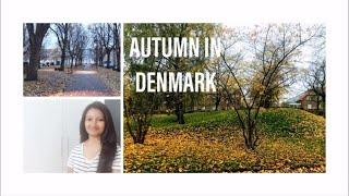 MY SUNDAY VLOG IN TAMIL | AUTUMN IN DENMARK | TAMIL VLOG | DIML | WEEKEND VLOG TAMIL | BHUVANA VLOGS