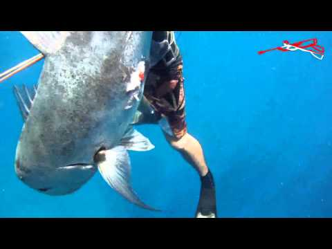 ULUA REEFER :: Featuring Renowned Free Diver HANALEI ADRIC