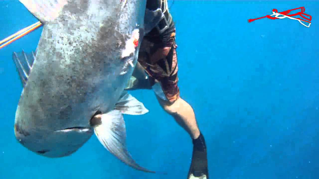 Ulua reefer featuring renowned free diver hanalei adric for Shore fishing oahu