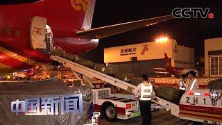 """[中国新闻] """"客改货""""助力 中国多个机场货运吞吐量增长   CCTV中文国际"""