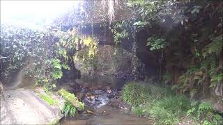 熊本県南関町  「 ふじの木上眼鏡橋 」