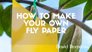 Homemade Fly Paper - David Domoney's Gardening Quick Tips.