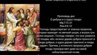 Евангелие дня 16 Июня 2020г
