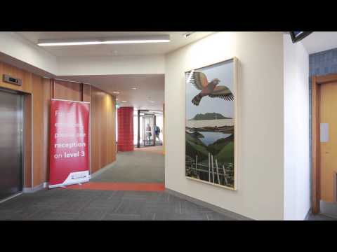 History of The University of Auckland Art Collection