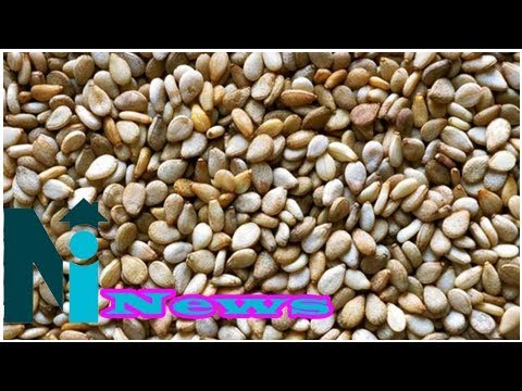Nigeria produces 75 % of seeds in west africa
