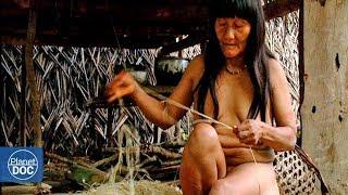 Huaoranis: Tribus de la Selva 3