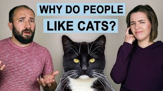 Why Do People Like Cats?