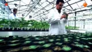 Zembla - De Monsanto methode - 04-03-2015