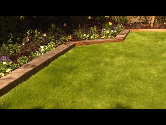 How to Care For and Maintain Lawns | Mitre 10 Easy As DIY